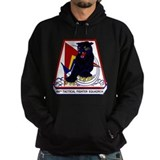494th TFS Hoodie