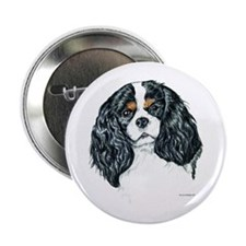 "Cavalier King Charles Spaniel 2.25"" Button (10 pac"