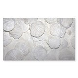 Scallop fossils - Decal