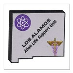 Los Alamos Alien Life Support Square Car Magnet 3