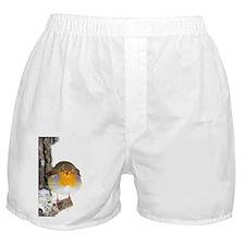 European robin - Boxer Shorts
