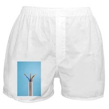 Electrical cable - Boxer Shorts