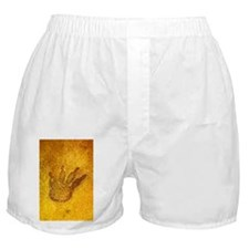 Fossilised dinosaur footprint - Boxer Shorts