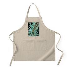 Diatoms, SEM - Apron