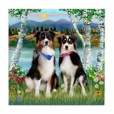 Birches & 2 Tri Aussies Tile Coaster