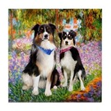Monet's Garden & 2 Tri Aussies Tile Coaster