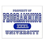 Programming University Small Poster