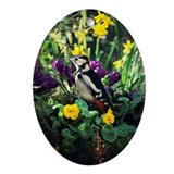 Great spotted woodpecker - Oval Ornament