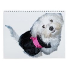 Unique Coton de tulear animals Wall Calendar