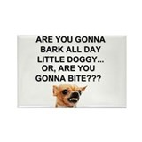 Are You Gonna Bark All Day Little Doggy... Or, Are