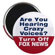 Turn Off Fox News Magnet