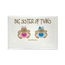 Big Sister Of Twins (boy/girl) Rectangle Magnet