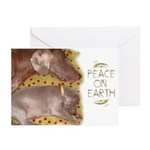 Peace On Earth Holiday Cards (10ct.)