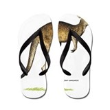 Gray Kangaroo Animal Flip Flops