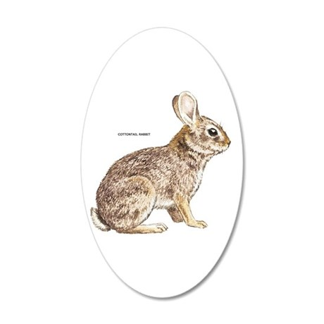 Cottontail Rabbit 20x12 Oval Wall Decal