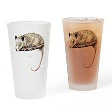 Opossum Animal Drinking Glass