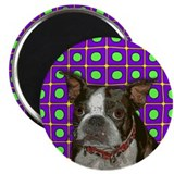 Pop Art Boston Terrier Magnet