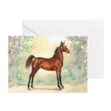 Morgan Colt Greeting Cards (Pk of 10)
