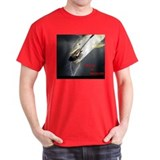 Copy of 31.jpg T-Shirt