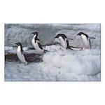 Penguin follow my leader Rectangle Sticker
