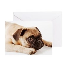 Pug Puppy Lying Down Greeting Card