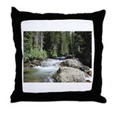 Funny Anointed Throw Pillow