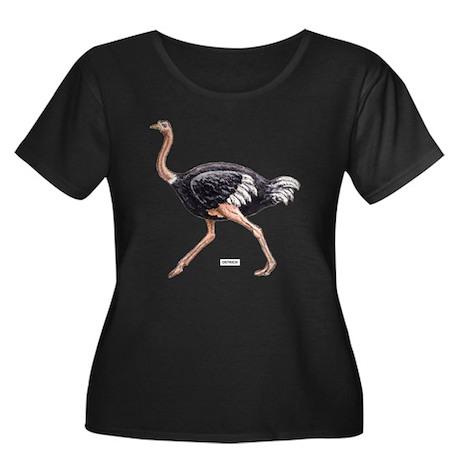 Ostrich Bird Animal Women's Plus Size Scoop Neck D