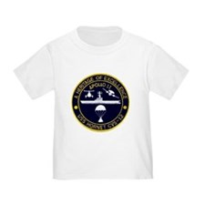 Apollo Program T