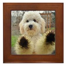 Goldendoodle Puppy Framed Tile