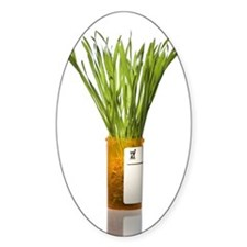 Prescription bottle with grass Decal