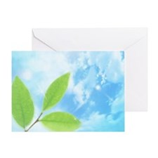 Green leaves under blue sky Greeting Card