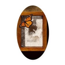 Monarch butterfly escaping display Oval Car Magnet