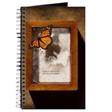 Monarch butterfly escaping display case Journal