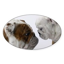 Two English Bulldogs face to  Decal
