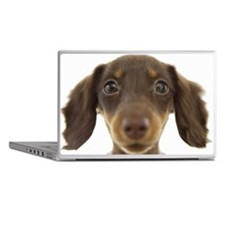 Wiener Dog (brown) Laptop Skins