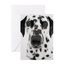 Dalmatian Greeting Card