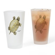 Northern Diamondback Turtle Drinking Glass