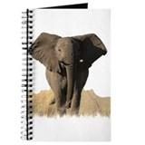 THE ELEPHANT Journal