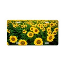 Cute Sunflower Aluminum License Plate