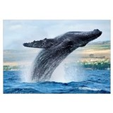 Hawaii, Maui, Humpback Whale Breaching With Island