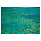 Great Barrier Reef, Whitsunday Islands, Whitsunday