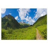 Lost Lake Trail, Kenai Mountains, Kenai Peninsula,
