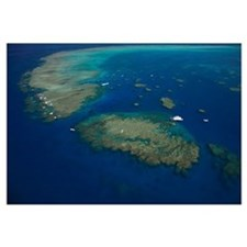 Moore Reef, Cairns, Great Barrier Reef, North Coas