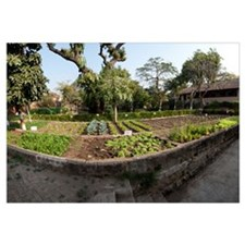 Organic garden of a fort, Ahilya Fort, Maheshwar,