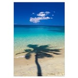 Fiji, Kadavu Islands, Shadow Of Palm Tree On Calm