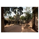 Ruins of a temple, Ta Prohm Temple, Angkor, Siem R