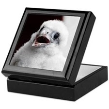 Junior at banding, Keepsake Box