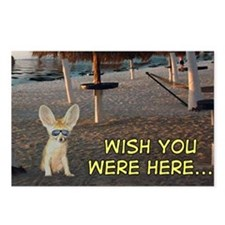 Fennec on a Beach Postcards (Package of 8)