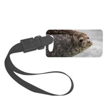 Harbor Seal on Iceberg, Alaska Luggage Tag