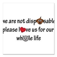 "Pets are NOT Disposable Square Car Magnet 3"" x 3"""